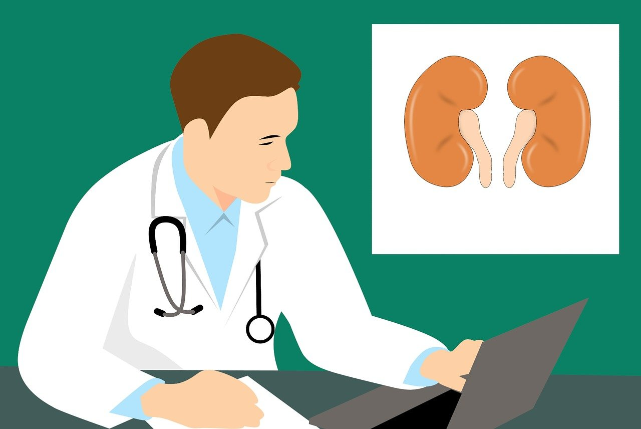 8 Symptoms of Kidney Damage for Working